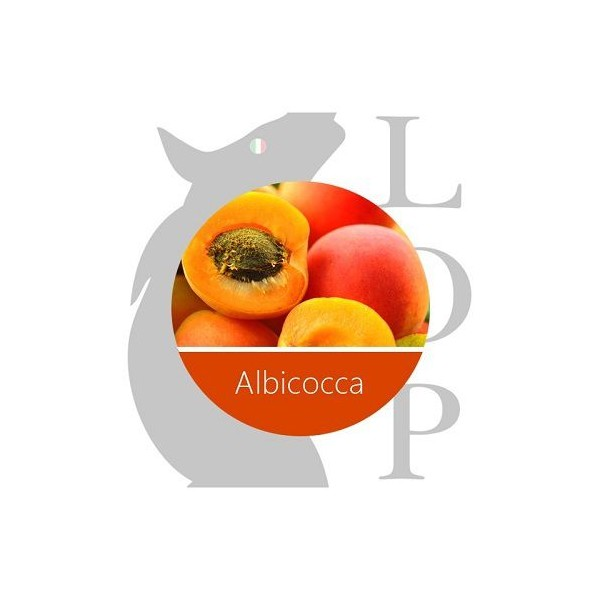 LOP AROMA CONCENTRATO 10ml - ALBICOCCA