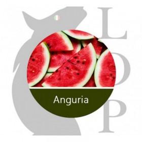 LOP AROMA CONCENTRATO 10ml - ANGURIA