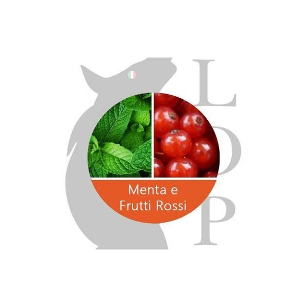 LOP AROMA CONCENTRATO 10ml - MENTA E FRUTTI ROSSI