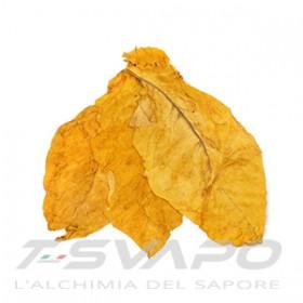 T-SVAPO - AROMA GOLD BLEND