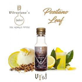 Vitruviano`s Juice - CONCENTRATO 20ml - Positano Leaf