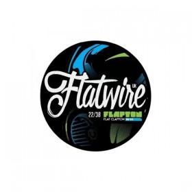 Flatwire Flapton Ni80 22/38 AWG